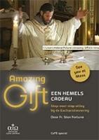 DVD - Amazing Gift - Een hemels Cadeau - met handleiding