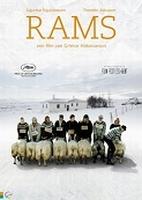 DVD - Rams