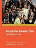 EXHORTATIE - Querida Amazonia - Geliefd Amazonië