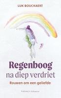 BOEK - Regenboog na diep verdriet