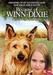 DVD - Because of Winn-Dixie
